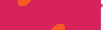 dizzigo® logo